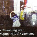 Citylights Murasaki Penguin